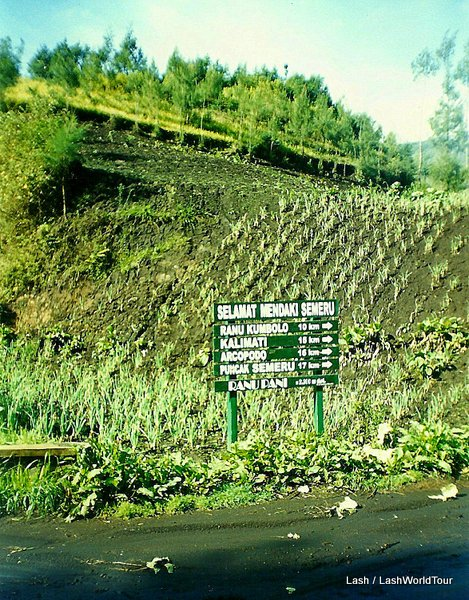 """Trekking signs with distances at Mt. Semeru Volcano in Central Java Indonesia"""