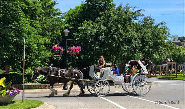 """Carriage Ride in Simcoe Park, Niagara-on-the-Lake"""