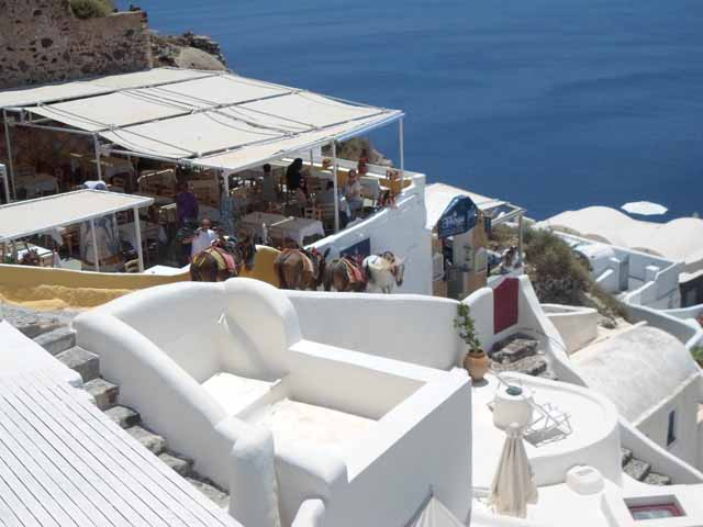 """Santorini's famous donkeys head home"""
