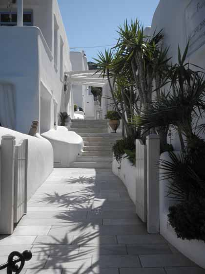 """Beautiful homes and palm trees of Mykonos"""